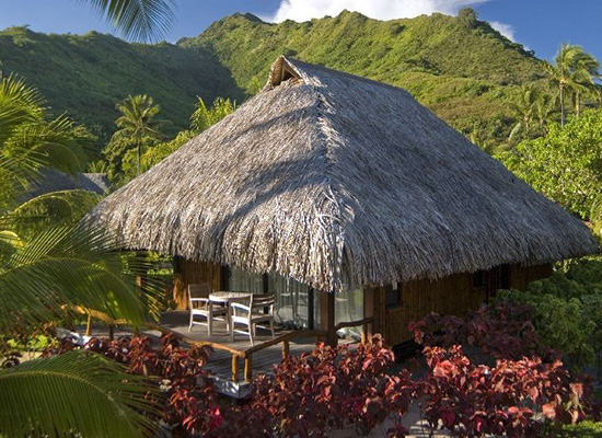 Hilton moorea lagoon resort spa deals pacific for less for Garden pool bungalow intercontinental moorea